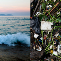 AkzoNobel partners with The Ocean Cleanup for largest clean-up in history